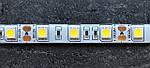 LED стрічка Skarlat LED LV-5050-60-IP44 3000K, фото 4