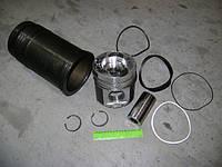 Гильзо-комплект Евро-2 (ГП+Кольца+Палец) (инд.гол.)