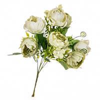 """Букет цветов """"Роза пионовидная"""" кремовая в упаковке 6 шт (8100-071)"""