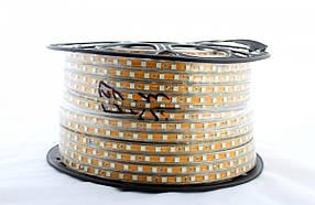 Світлодіодна LED стрічка 5050 M RGB 100m 220V (кольорові діоди)