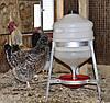 Поилка для домашней птицы