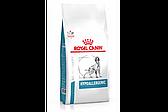 Royal Canin Hypoallergenic Canine 14кг DR 21 Диета для собак при пищевой аллергии или непереносимости