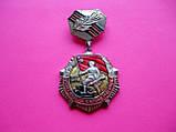 Нагрудный Знак СССР «25 лет победы в Великой Отечественной войне 1941-1945 гг.», фото 2