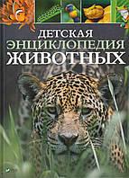 Книга Детская энциклопедия животных