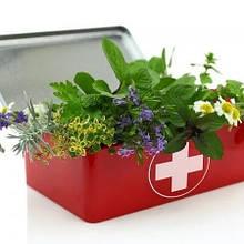 Фунгіциди – від хвороб рослин