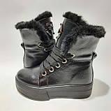 36,39 р. Зимние женские кожаные сапоги ботинки на меху полусапожки Черные, фото 6