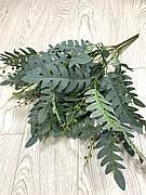 Папоротник декоративный , зелёный с напылением ( 56 см)