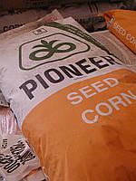 Семена кукурузы Пионер ПР39Т45 (Pioneer PR39T45)