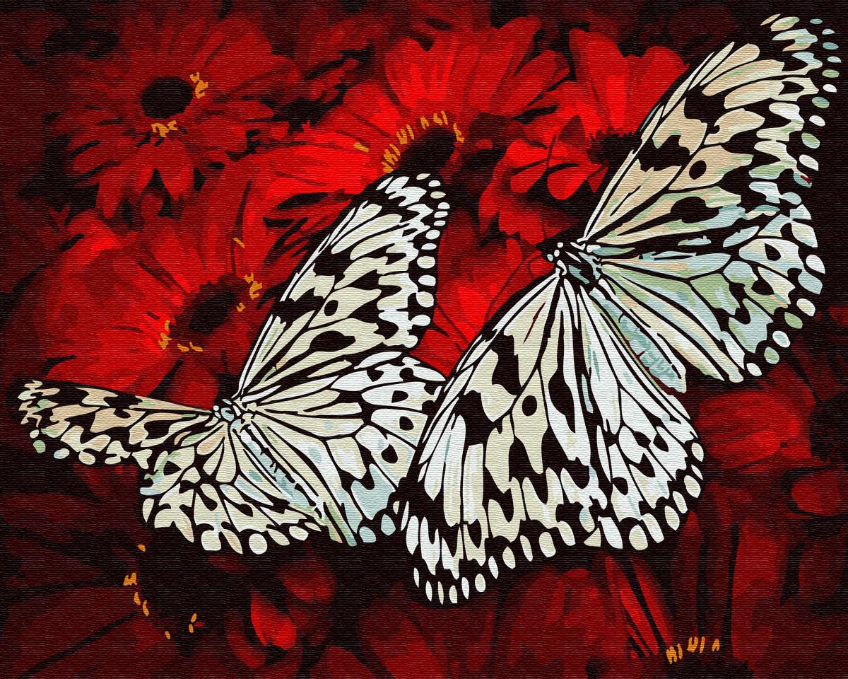"""Картина по номерам BrushMe (Брашми) """"Бабочки на цветах"""" 40х50 см GX29432"""