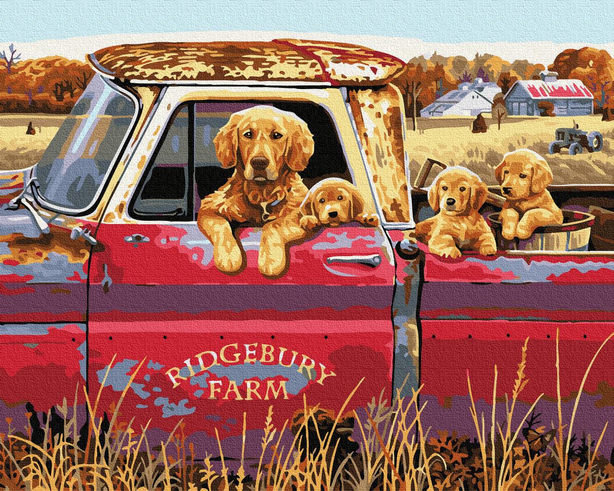 Собачья семейка в авто