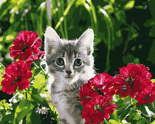 Котенок в цветах, фото 2