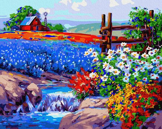 Цветущее поле, фото 2