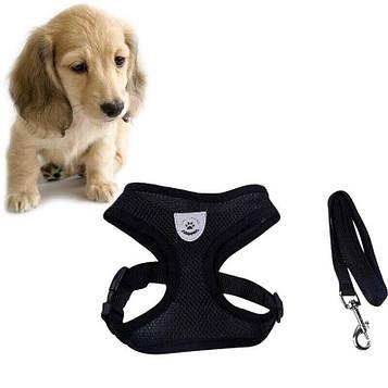 Шлея для маленької собаки M (2.5-4 кг), шлейка поводок для вигулу кішок, собак | шлейки для собак (SV)
