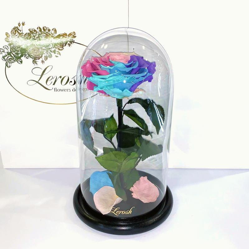 Долгосвежая Нежная Радужная роза подарок в стеклянной колбе Lerosh - Premium 27 см M15-279555