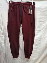 Спортивные штаны мужские Jager Fable на манжетах трикотажные без надписей