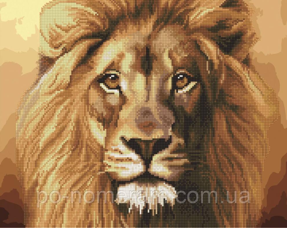 Алмазная картина BrushMe Могучий лев (BGZS1043) 40 х 50 см