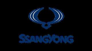 SsangYong (всі моделі)