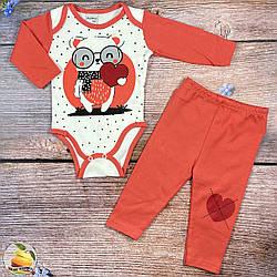 Боді і штанці для дівчинки Розміри: 3,6,9,12 місяців (01468-1)