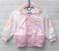 """Куртка демісезонна з капюшоном MARY на дівчинку 3-7 років (3ол) """"NEMO"""" недорого від прямого постачальника"""