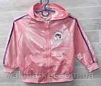 """Вітровка дитячий демісезонний з капюшоном на дівчинку 3-7 років (3ол) """"NEMO"""" недорого від прямого постачальника"""