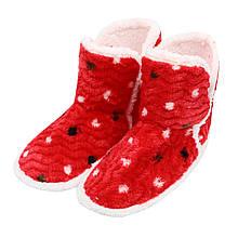 Тапочки сапожки женские красные на мягкой подошве для дома Горошек р.36-40