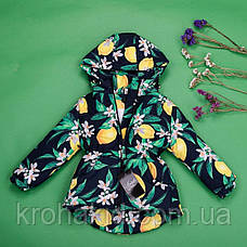 Демісезонна дитяча курточка 3D плащівка ( 86, 92, 98, 104, 110, 116, 122, 128, 134 ), фото 3