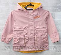 """Вітровка дитячий демісезонний з капюшоном на дівчинку 5-9 років (3ол) """"NEMO"""" недорого від прямого постачальника"""