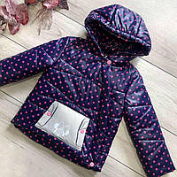 Курточка дитяча Wellajur kids горошок (синій/рожевий) 86см