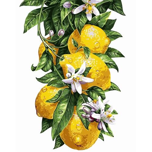 Картина по номерам Лимоны, в термопакете 40*50см код: VA-0817