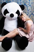 Большая Плюшевая Панда 200см