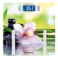Весы напольные диагностические Scarlett SC-BS33ED10, фото 1