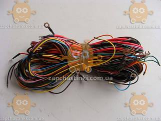 Проводка кузовна ЮМЗ (вир-во Росія) ПД 81695
