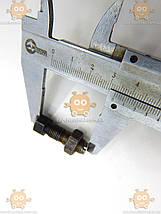 Гвинт регулювальний клапанів з гайкою Газель ЗМЗ 402 ЯКІСТЬ! (пр-во ЗМЗ) М 3602003, фото 2