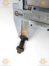 Гвинт регулювальний клапанів з гайкою Газель ЗМЗ 402 ЯКІСТЬ! (пр-во ЗМЗ) М 3602003, фото 3