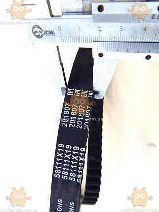 Ремінь ГРМ ВАЗ 2108, 1111 ОКА зуби 111 круглі (8 клап) (пр-во Herzog Німеччина) М 2978823, фото 2