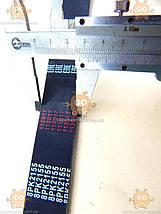 Ремінь 8РК2155 приводу генератора Газель NEXT, Бізнес дв.Cummins ISF 2.8 (пр-во Herzog Німеччина) М 3730813, фото 3