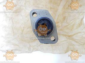 Цилиндр сцепления главный ВАЗ 2101 - 2107 (пр-во FENOX Беларусь) М 1476263 ПД 20050, фото 3