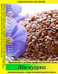 Семена лен-кудряш (масличный) 25 кг