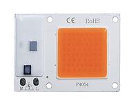 LED светодиод 10Вт 220В - полный спектр, фитолампа, фото 1
