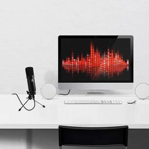 Микрофон студийный M800U Черный, фото 2