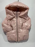 Демісезонна Куртка дитяча для дівчинки під гумку з капюшоном Реглан 2-5 років, мерехтливої кольору