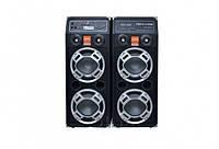 Активная акустическая система Temeisheng DP 2329 с 2 микрофонами, фото 1