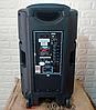 Портативная колонка c экраном SL 12-13 с 2 микрофонами (200W), фото 3