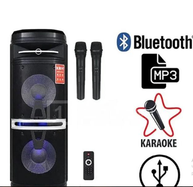 Портативная акустическая система Temeisheng TS-210-05   2 микрофона LED подсветка