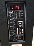 Портативна колонка Temeisheng QX - 0862 з радіомікрофоном / 50W (USB/Bluetooth), фото 3