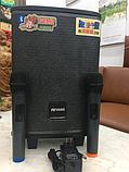Портативна колонка Temeisheng QX - 0862 з радіомікрофоном / 50W (USB/Bluetooth), фото 4