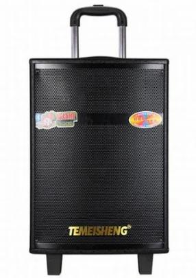 Портативная акустическая система Temeisheng QX-1207 с 2 микрофонами