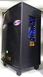 Портативная акустическая система Temeisheng QX-1207 с 2 микрофонами, фото 2