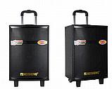 Портативная акустическая система Temeisheng QX-1207 с 2 микрофонами, фото 5