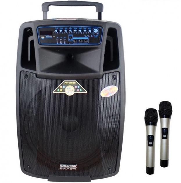 Портативная акустическая система Temeisheng SL 15-01 с 2 микрофонами